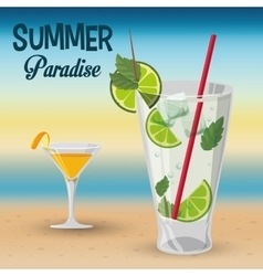 Summer paradise cocktails beach sunset vector