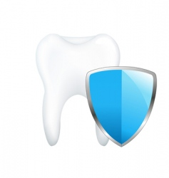 tooth with shield vector image vector image
