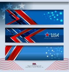 banner american design vector image