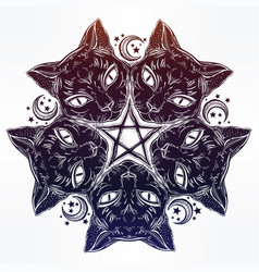 Black cat head portrait madnala moon pentagram vector
