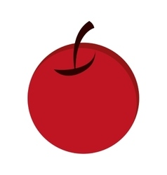 single cherry icon vector image