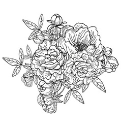 Peony floral bouquet vector