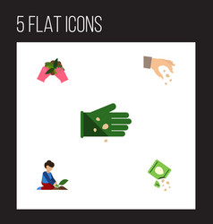Flat icon sow set of sow plant florist and other vector