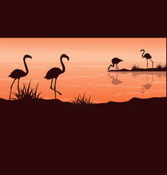 Scenery at sunset with flamingo silhouettes vector