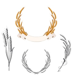 Set of wheat ears with banner and ribbon vector