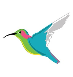 Small exotic hummingbird vector