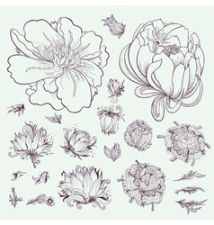 Outline flowers sketch set vector