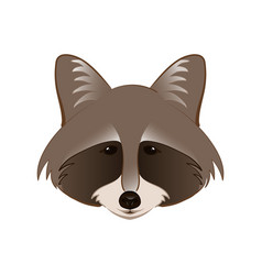 raccoon in cartoon style vector image