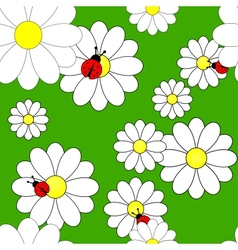 seamless pattern with camomiles vector image