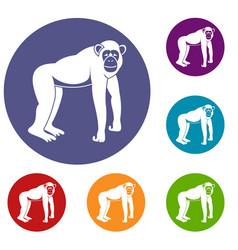 Chimpanzee icons set vector