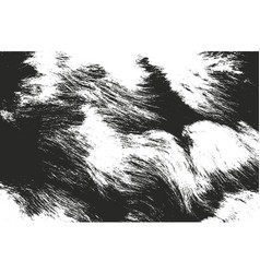 distressed overlay texture of natural fur vector image vector image
