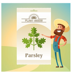 Pack of parsley seeds icon vector