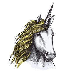 Sketch unicorn horse mystic magic animal vector