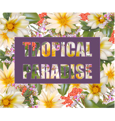 tropic paradise card chamomile flowers vector image vector image
