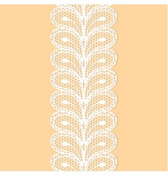 White lacy border vector
