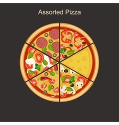 Assorted pizza vector