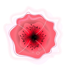 Beautiful poppy flower sign for beauty services vector image