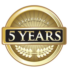 Five years experience gold vector