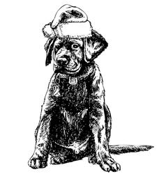 Labrador retriever 01 1 vector