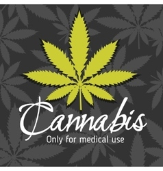 Marijuana - cannabis For medical use set vector image