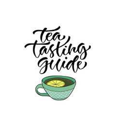 Tea tasting guide calligraphy for menu vector