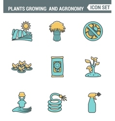Icons line set premium quality of plants growing vector