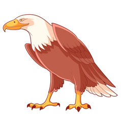 cartoon smiling eagle vector image vector image