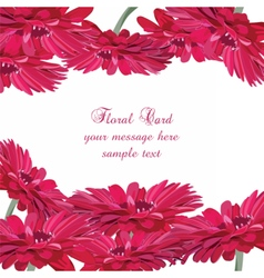 Gerbera pink flower card vector