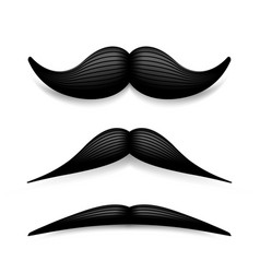 mustache isolated on white black vintage vector image