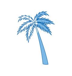 Palm tree natural tropical botanical vector