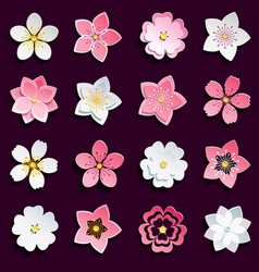 Set of cherry blossom sakura flowers vector