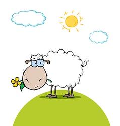Sheep cartoon vector