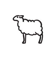 Sheep sketch icon vector