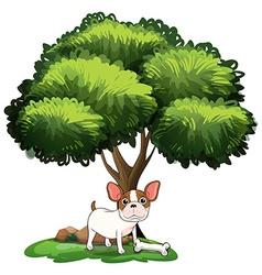 Dog under Tree vector image