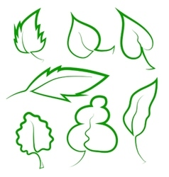 Set of leaf icons vector