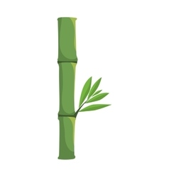 Bamboo plant icon nature and plant design vector