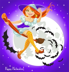 Cute young witch on a broomstick in the night sky vector image