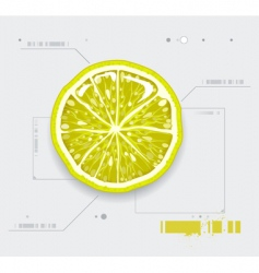 lemon modern background vector image