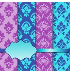 set of seamless with lace pattern vector image vector image