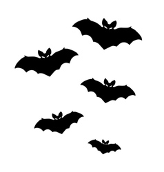 Silhouettes of bats on white background vector
