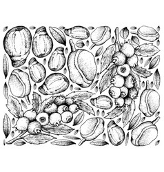 Hand drawn frame of blueberries and red mombin vector