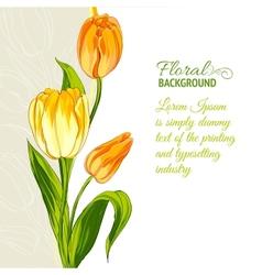 Tulip bouquet vector image vector image