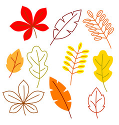 Set of stylized autumn foliage falling leaves in vector