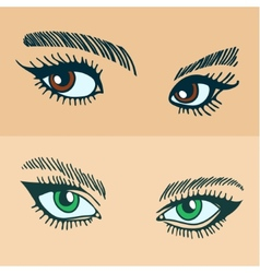 Green and brown womens eyes vector