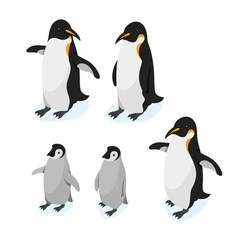 Isometric 3d realistic style set of penguins vector image