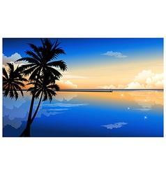 Palm at dawn vector