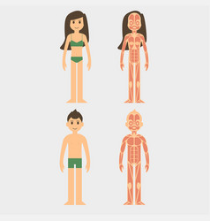 stylized male and female vector image vector image