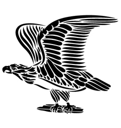 Eagle bird vector image