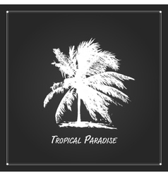 Tropical palm tree for your design vector