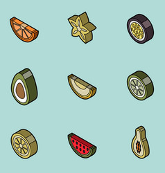 Fruit flat outline isometric set vector